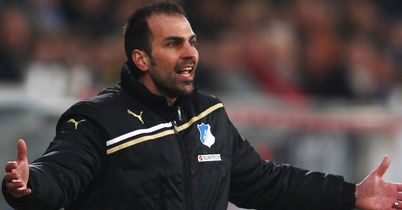 Markus Babbel: Sacked as coach of struggling Hoffenheim