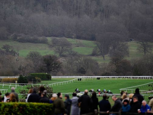 Cheltenham: Monday inspection