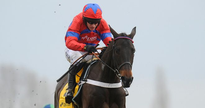 Sprinter Sacre: Faces five in Arkle