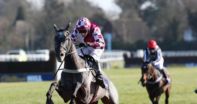 Baby Mix: Back on song at Kempton and now favourite for the Triumph Hurdle