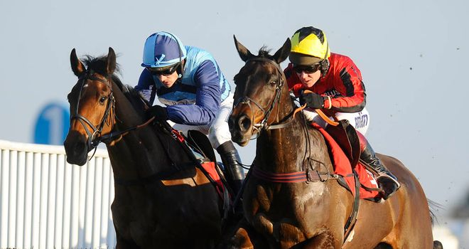 Duke Of Lucca: Can reward each-way support in the Racing Plus Chase