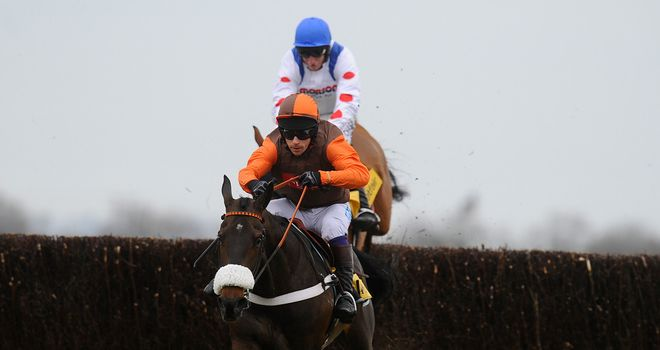 Long Run: Unlikely to run again this season as he won't head to Aintree