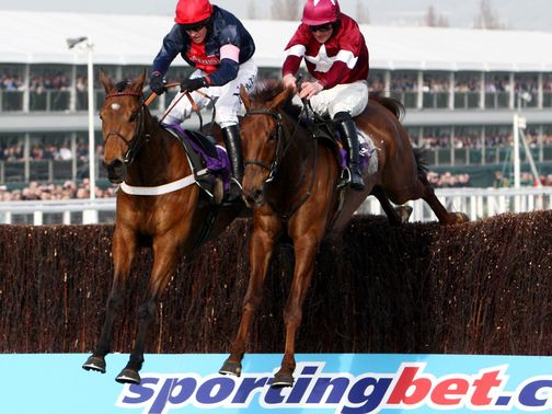 First Lieutenant (right) may head for the Gold Cup