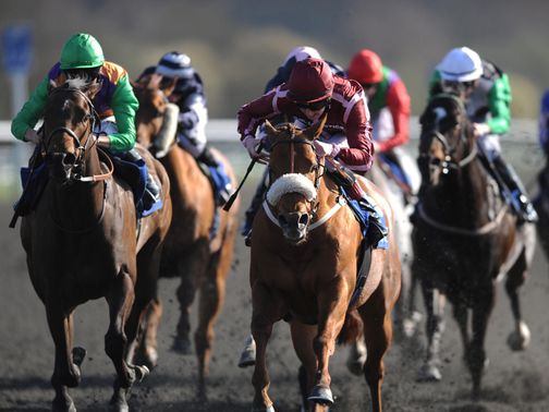 Lingfield stages an eight-race card