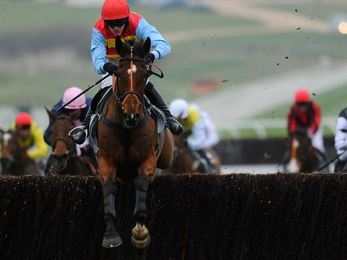 Hunt Ball: Helps establish a key trend at Cheltenham