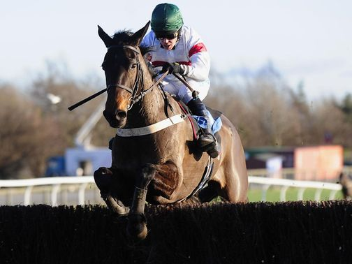 Posh Bird: A big price to win a second North Yorkshire Grand National