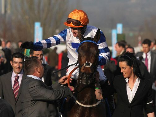 Son Of Flicka: Don't rule out another big run at Cheltenham