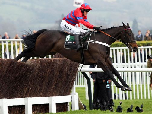 Sprinter Sacre produces another flawless leap on his way to success