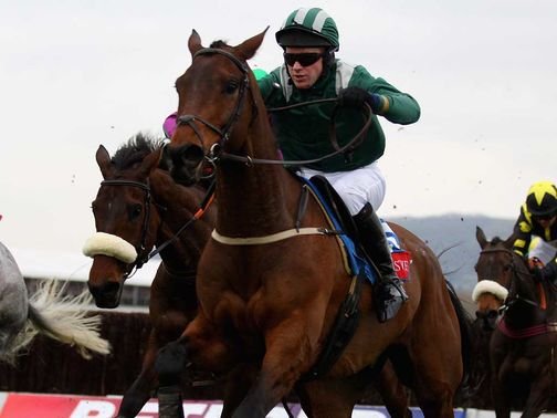 Salsify: Final race ahead of Cheltenham defence at the weekend