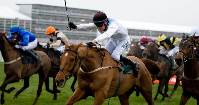 Becauseicoudlntsee: Hoping to bounce back at Leopardstown