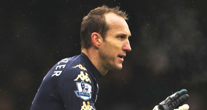 Mark Schwarzer: Insists Fulham's players do not have an issue with Martin Jol