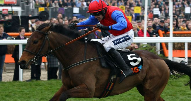 Quevega: One of 36 entries for the Mares' Hurdle