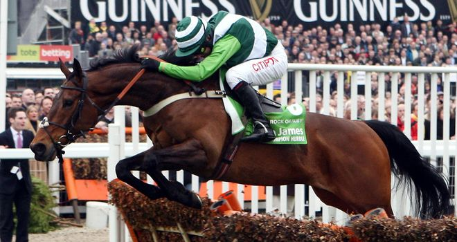 Rock On Ruby: On course for the StanJames.com International Hurdle at Cheltenham