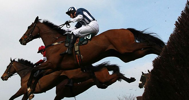 Teaforthree: Now the mount of AP McCoy in Saturday's Hennessy Gold Cup