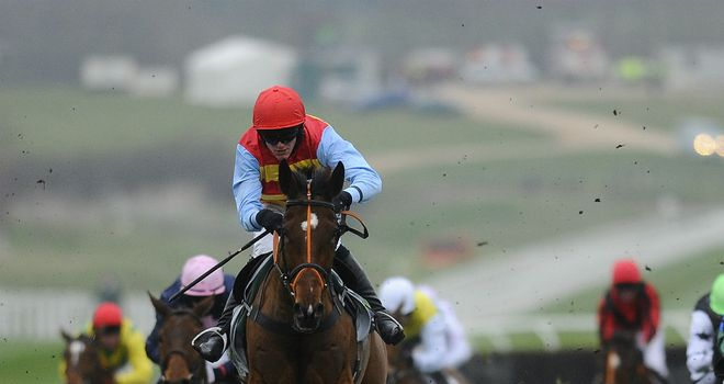Hunt Ball: Could bid for handicap glory at Cheltenham