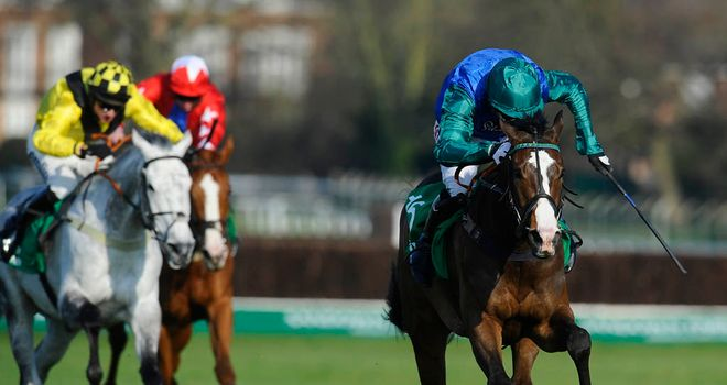 Paintball: Springs a 20-1 surprise in the Imperial Cup and could now go to Cheltenham