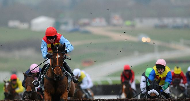 Hunt Ball: Could run at Kempton before heading to Cheltenham