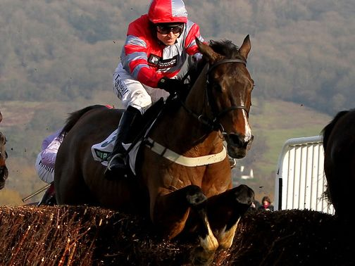 Tartak: Cheltenham hopeful