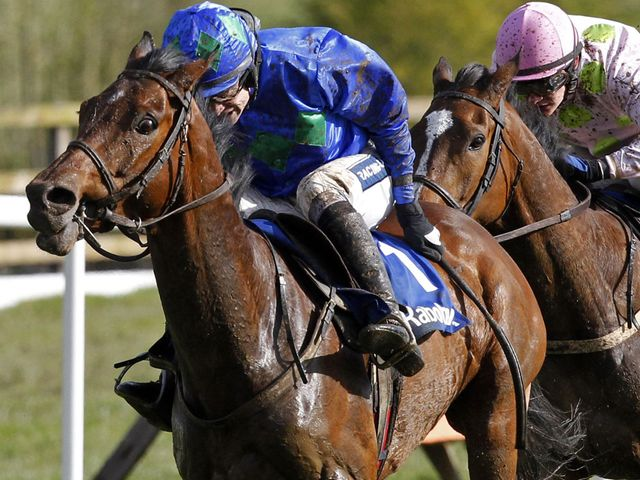 Zaidpour (r): Won the Hatton's Grace Hurdle