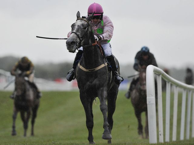 Champagne Fever: Beaten at 1/4 in Naas feature