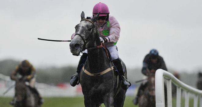 Champagne Fever: Made a winning start over hurdles