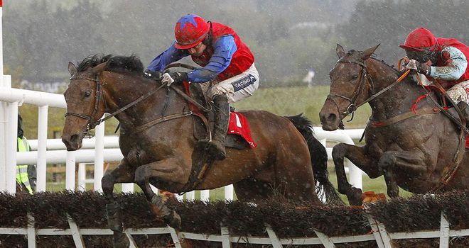 Quevega: On track for the David Nicholson Mares' Hurdle