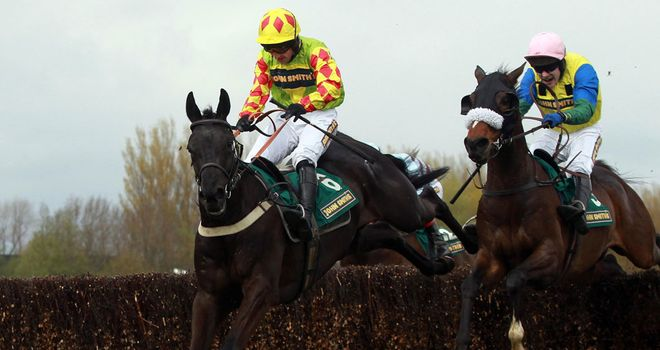 Saint Are: Will head straight to Newbury for his first run of the season in the Hennessy Gold Cup on December 1