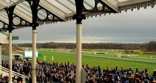 Newcastle's StanJames.com Fighting Fifth Hurdle meeting on Saturday is under threat from cold weather