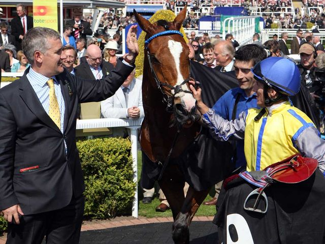 Overturn: Set to race at Doncaster on Wednesday