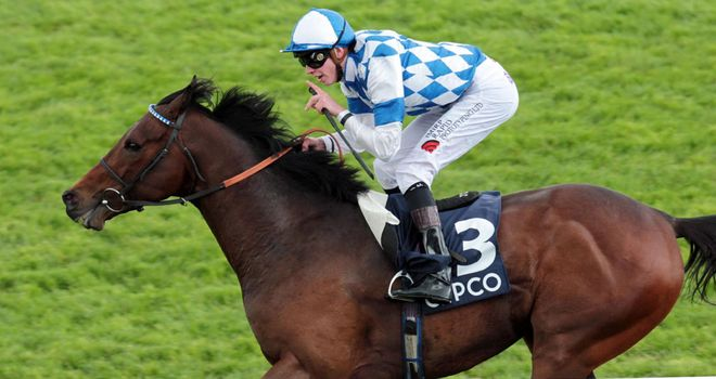 Al Kazeem: Developed into a Group race performer last year