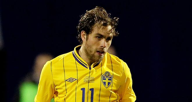Johan Elmander: Expected to start against Ukraine in Sweden's Group D opener on Monday