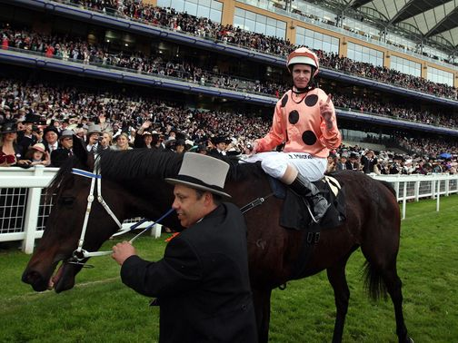 Black Caviar: Looks set to race on next season