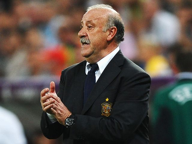 Vicente del Bosque: Pleased with display