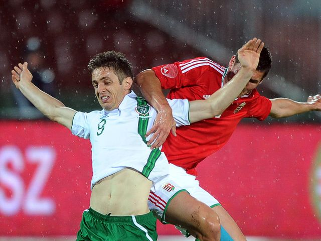 Kevin Doyle and Adam Szalai battle for the ball