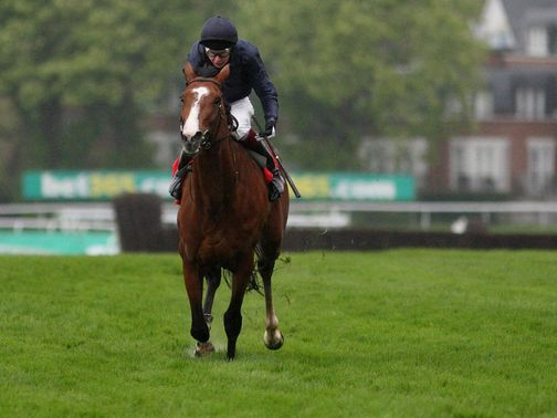Imperial Monarch: Has been ruled out of the Arc