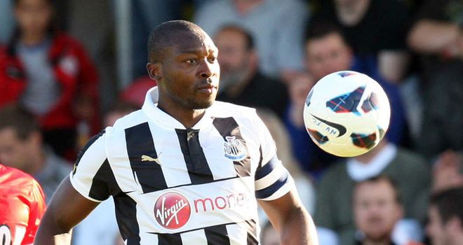 Shola Ameobi: Hoping Newcastle can build on last season's heroics