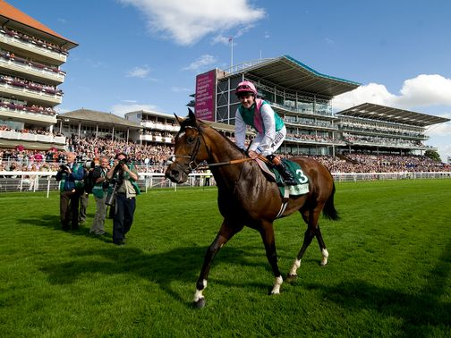 Frankel: A game of numbers