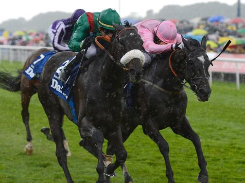 Shareta (left) cut to a best of 14/1 for the Arc