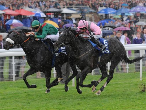 The Fugue: Stays in training as a four year old