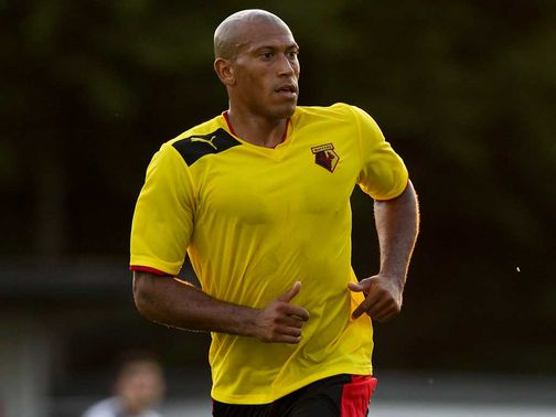 Chris Iwelumo: Expects to leave Watford next month