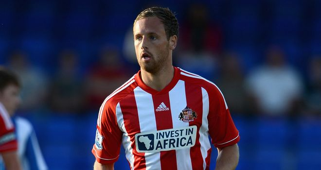 David Meyler: Sunderland midfielder wants to keep his place in the Republic of Ireland squad