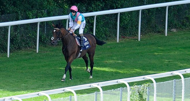 Frankel; the finest horse you'll ever see?