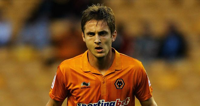 Kevin Doyle: Has scored 22 goals for Wolves since moving from Reading in 2009