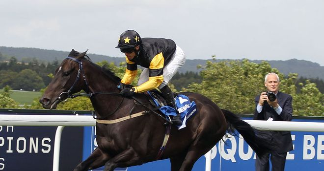 Hawkeyethenoo: Could target the Ayr Gold Cup