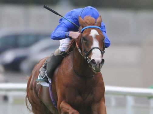 Dawn Approach had his odds slashed for the 2000 Guineas