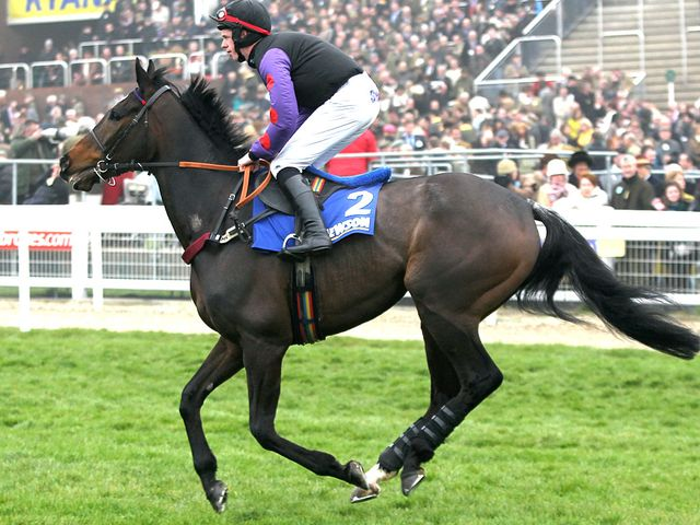 Champion Court: Reappears at Ascot on Saturday