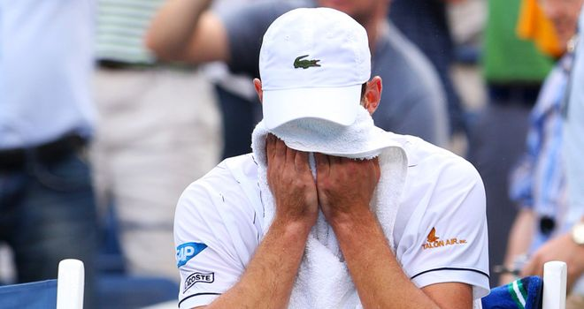 Andy Roddick: Has retired from tennis after defeat to Del Potro