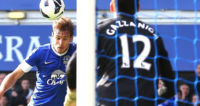 Nikica Jelavic: Croatia striker has been in superb form for Everton