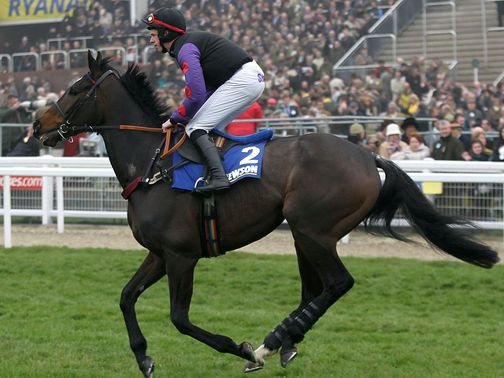 Champion Court: Could head for the Sky Bet Chase next
