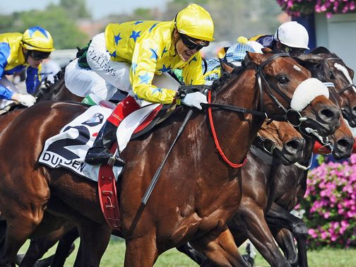 Dunaden: Must go close to defending his crown in the Melbourne Cup